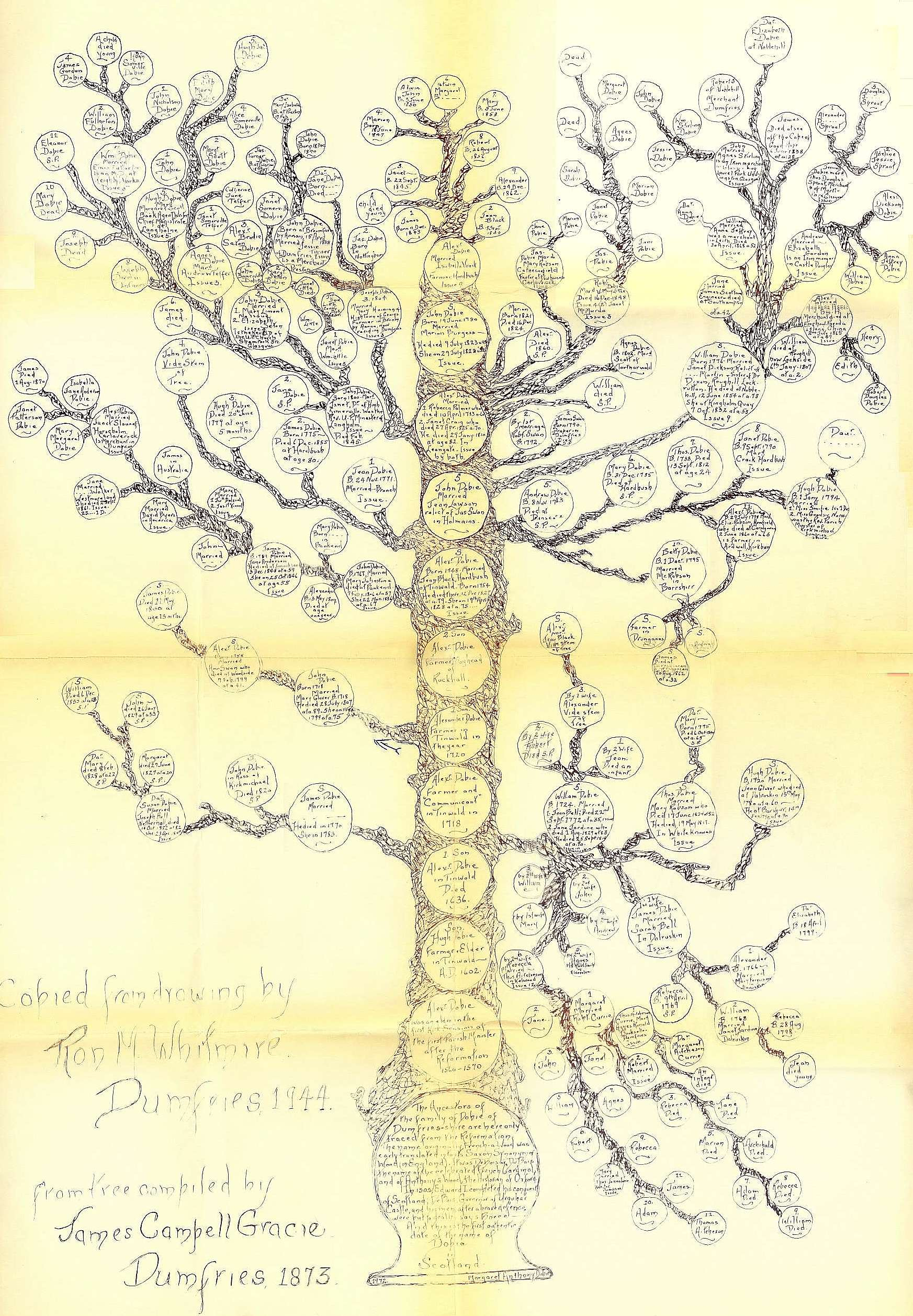 Full-size scan of The Gracie Tree